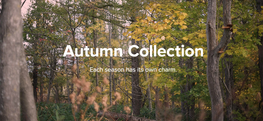 GENTEMSTICK Autumn Collection